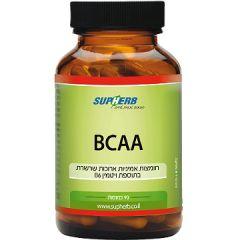 סופהרב חומצות אמיניות BCAA 90 כמוסות SupHerb